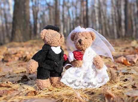Wedding, Just Married, The Groom, Bride, Bear, Dress