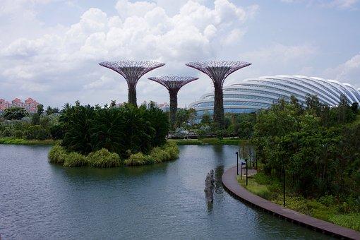 Singapore, Garden, Park, Asia, Nature, Plant, Gardening