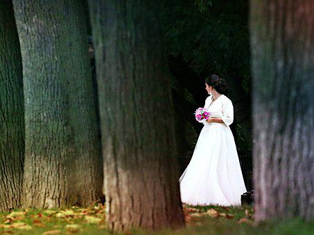 Bride, Wedding, Bouquet, Dress, Happiness, Nature, Fur