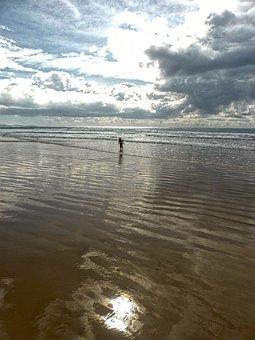 Child, Playing, Beach, Coast, Marine, Peaceful, Relax