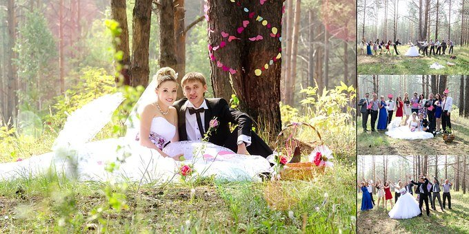 Wedding, Bride, The Groom, Just Married, Nature