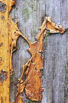 Wood, Flake, Weathered, Old, Wall, Structure