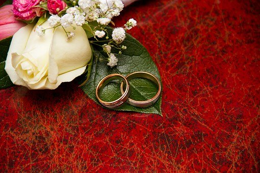 Engagement, Rings, Flowers, Wedding, Happiness, Love