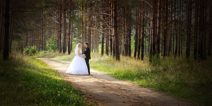 Wedding, Just Married, Bride, The Groom, Dress, Nature