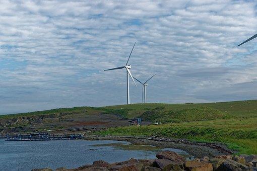 Wind Turbines, Wind Power, Energy, Power, Wind, Turbine