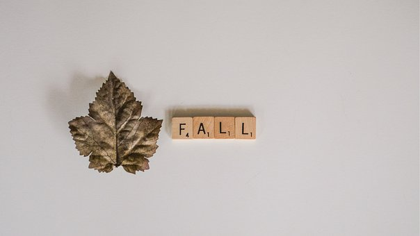 Whitespace, From Above, Fall, Autumn, Leaf, Graphics