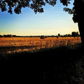 Field, Go, Sunset, Countryside, Nature, Summer, Bed
