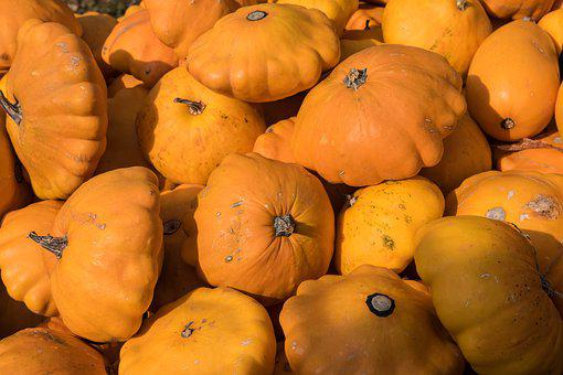 Pumpkin, Pumpkins, Autumn, Autumn Decoration, Orange