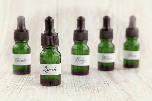 Bach Flower Remedy, Bach Flower Essence, Homeopathy