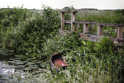 Boat, Water, Flora, Canal, Ship, Abandoned, Hidden
