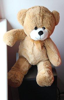 Bear, Teddy, Toy, Cute, Soft, Furry, Childhood