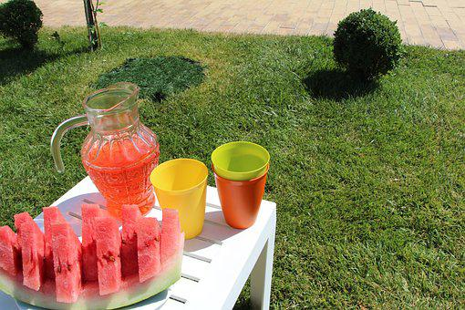 Summer, Picnic, Juicy, Vacation, On The Nature, Tasty