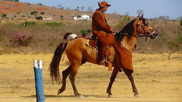 Cowboys, Knight, Backcountry, Northeast, Bahia