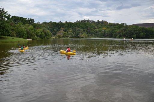 Lake, Paddle Boat, Kayak