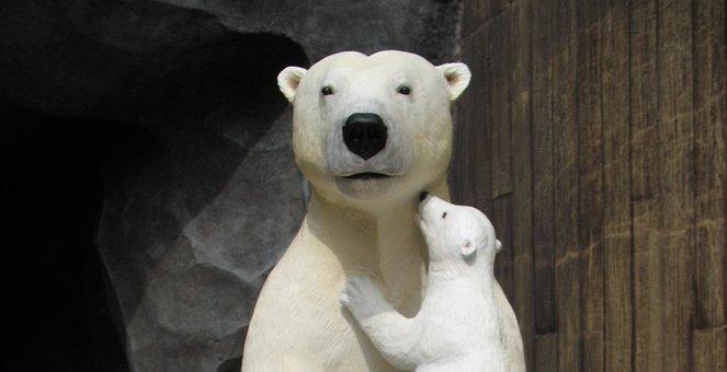 Bears, Polar Bears, Mother Bear, Bear Cub