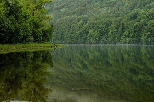 Angler, Lake, Pond, The Sun, The Rays, Reflection