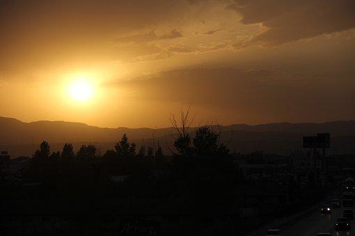 Sunset, Tree, Amazing, Palmer, Sunrise, Travel, Offer