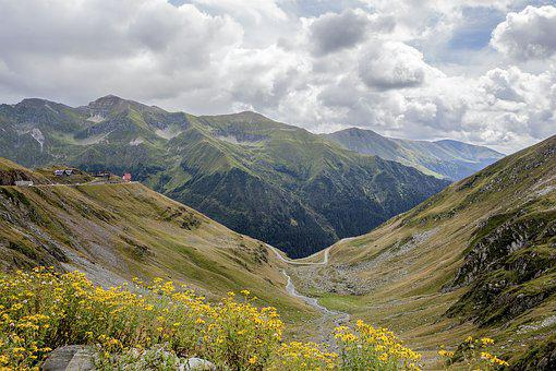 Romania, Flowers, Landscape, Travel, Transylvania