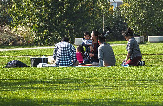 Picnic, Family, Sit, Green Area, Plant, Park, Grass