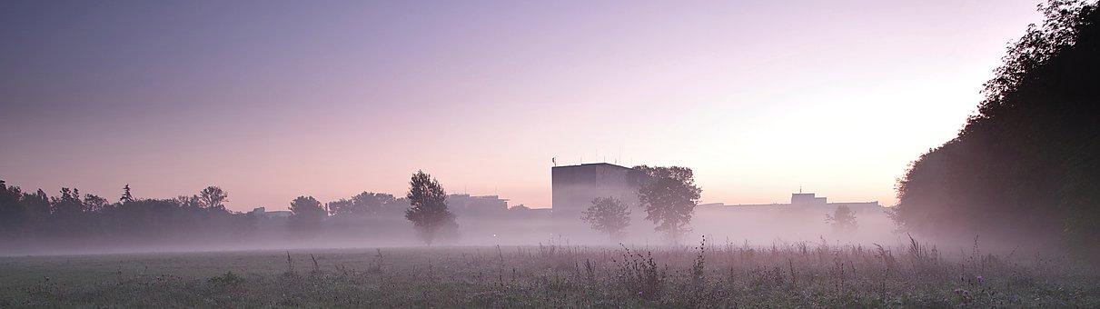 The Fog, National Library, Warsaw, Meadow
