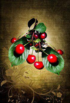 Nature, Fruit, Fruits, Red, Frisch, Healthy, Cherry