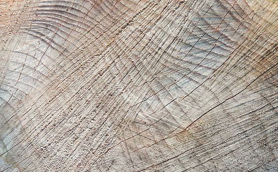 Texture, Background, Wood, Wood Grain, Structure
