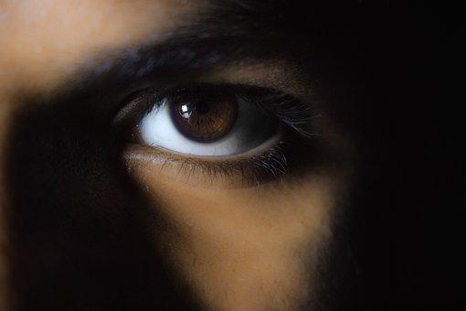 Macro, Eyes, Brown, Skin, Close, Vision, Healthy, Look