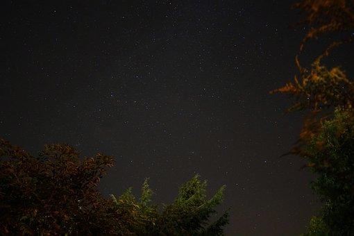 Star, Night Sky, Long Exposure, Night, Starry Sky, Sky