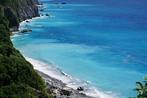 Ocean, Blue, Tree, Sky, Sea, Beach, Summer, Vacation
