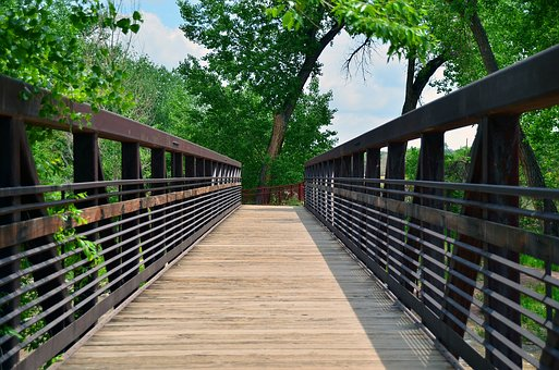 Bridge, Walkway, Outdoor, Path, Nature, Park, Natural