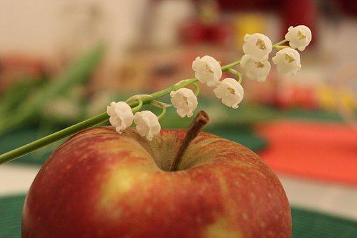 Apple, Lilies Of The Valley, Flowers, Fruit, Spring