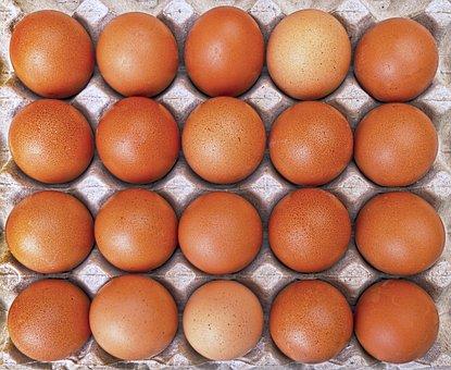 Egg, Range Eggs, Lots Of Eggs, Loose, Geflügelhof