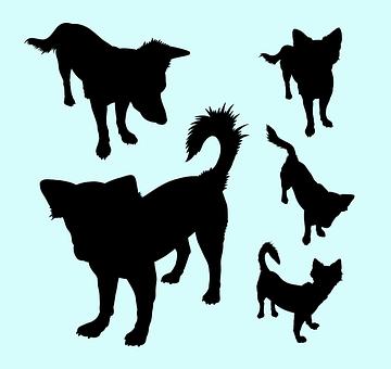 Vector, Silhouette, Dog, Mammal, Fauna, Dog Lovers