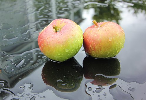 Apples, Rain, Garden, Juicy, Ripe, Nature, Autumn