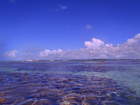 Northeast, Beaches, Brazil, Nature, Sol, Mar, Litoral