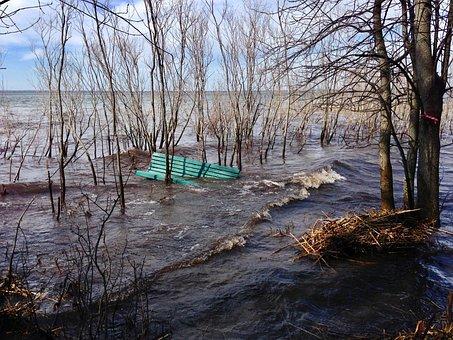 Flood, Bare Trees, Park Bench, Québec