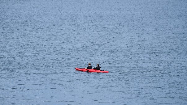 Kayak, Canoeing, Wannsee, Paddle, Sport, Water