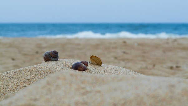 Beach, Sand, Sea, The Coast, Water, The Stones, Nature