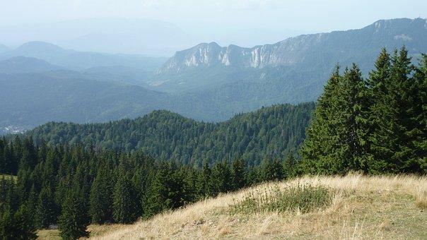 Mountains, Romania, View