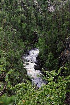 River, Threshold, Forest, Landscape, Spray, Nature