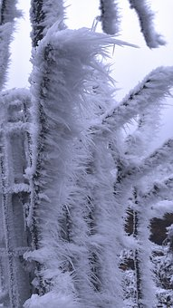 Hoarfrost, Wintry, Frost, Aesthetic, Cold