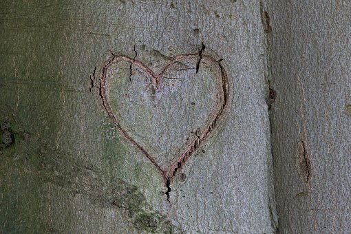 Heart, Tree, Wooden Structure, Love, Valentine's Day