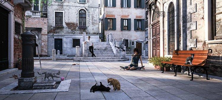 Venice, Pigeons, Cats, Fontana, Man, Woman, Bench