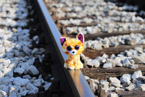 Kitty Waiting For Lost Friend, Railway