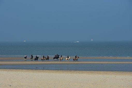 Equestrian Group, Beach, North Sea, Ride