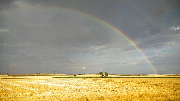 Field, Castilla, Rainbow, Yellow, Sky, Landscape