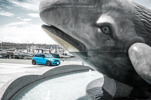 Travel, Mini Cooper, Whale Statue