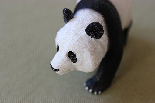 Animal, Bear, Panda, Panda Bear, Toys, Wild Animal, Zoo