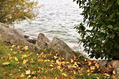 Lake, Beach, Autumn, Cloudy, Bodensee, Water