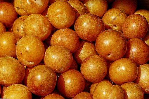 Apricot, Fruit, Stone Fruit, Prunus Armeniaca, Malete
